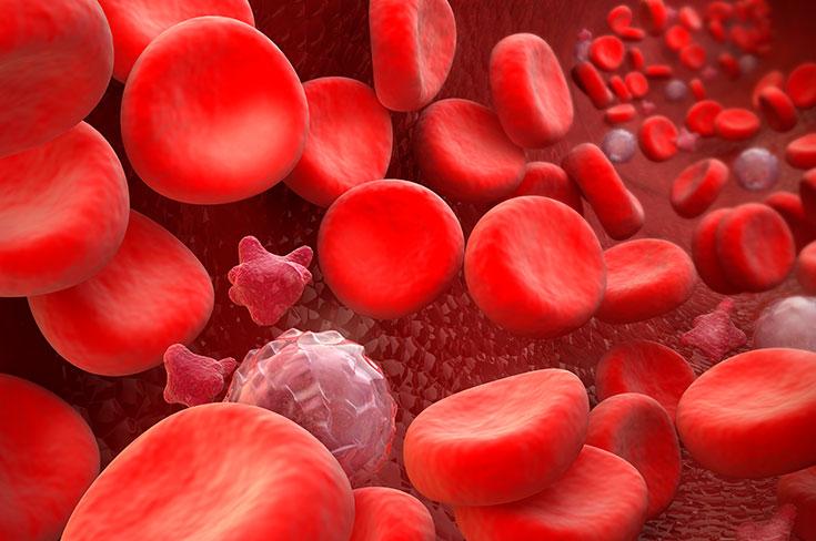 Тромбоциты ниже нормы у мужчин